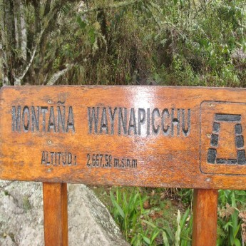 Waiyna Picchu - I made it! (Traveltinerary)