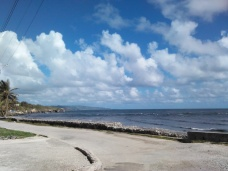 Martins Bay coastline (Traveltineraries)