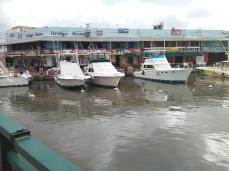 Tourist yachts & restaurants (Traveltineraries)
