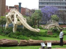 Pretoria, South Africa - Jacaranda & Dinosaurs (Traveltineraries)
