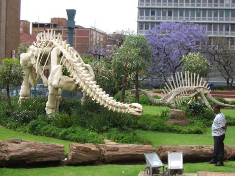 Pretoria, South Africa - Jacaranda & Dinosaurs (Traveltineraries)