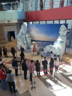 World of Coke - Remember the Polar Bear Ad?- Traveltineraries