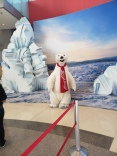 World of Coke - Polar Bear - Traveltineraries